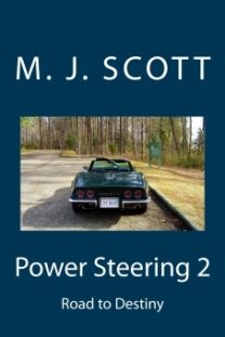 power-steering-2-cover-at-17-percent