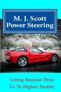 Power Steering ebook cover same as Hardbook thumbnail